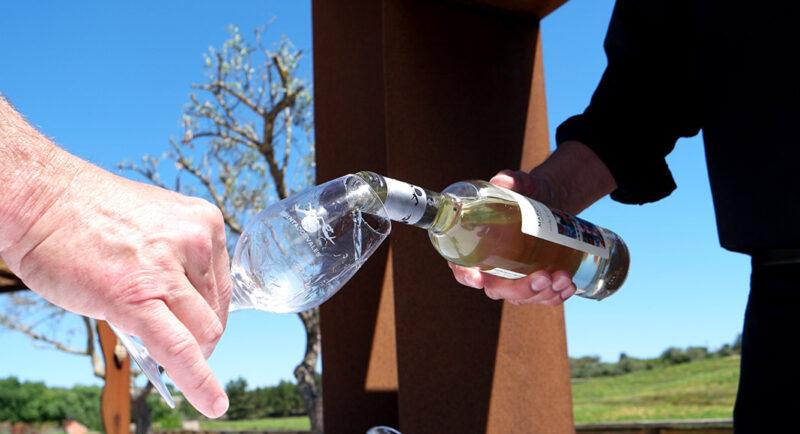 Qu'est-ce qu'on attend d'un domaine viticole portugais situé en Algarve ?