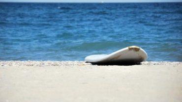 Le surf est de retour en Algarve!