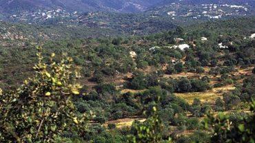 L'Office du Tourisme révèle les secrets de l'Algarve