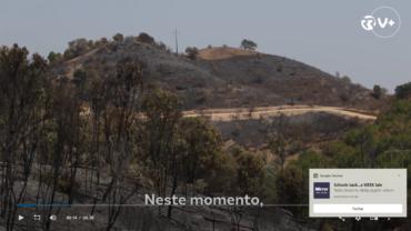 Un « cocktail météorologique défavorable » porte le risque d'incendie au Portugal à un point de « tolérance zéro »