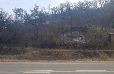 Incendie de Bensafrim en « résolution » : 121 pompiers toujours en place