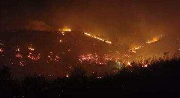 Castro Marim promet un soutien immédiat aux victimes des incendies de forêt