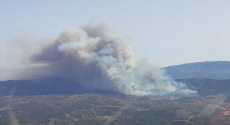 Près de 700 pompiers continuent de lutter contre l'incendie d'Odemira-Monchique ;  17 personnes évacuées