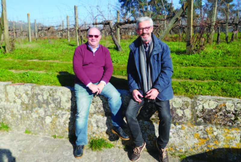 Casa de Cello : un autre regard sur le vinho verde