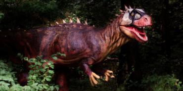 Sur les traces des dinosaures à Lourinhã