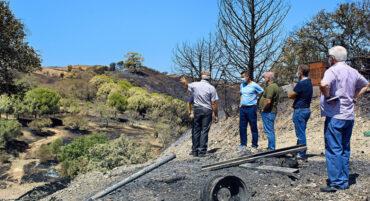 Les autorités rencontrent des agriculteurs pour évaluer les dommages causés par l'incendie de Castro Marim