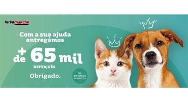 Intermarché fait don de 65 000 repas pour les animaux abandonnés