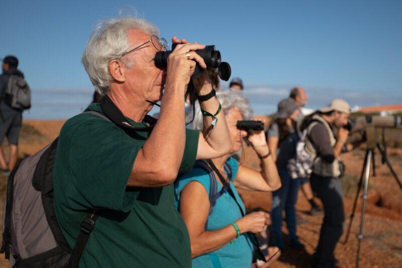 Le compte à rebours commence pour le festival d'observation des oiseaux de Sagres
