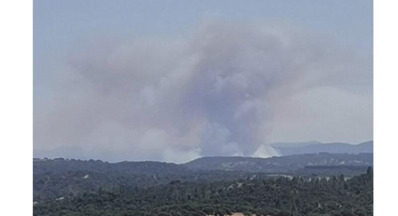 260 pompiers combattent un incendie à Odemira, près de la frontière de l'Algarve