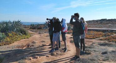 Le Sagres Birdwatching Festival attire 1100 amoureux de la nature «de partout»