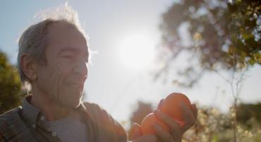 Un court métrage sur les oranges biologiques de l'Algarve remporte le prix Impact DOCS
