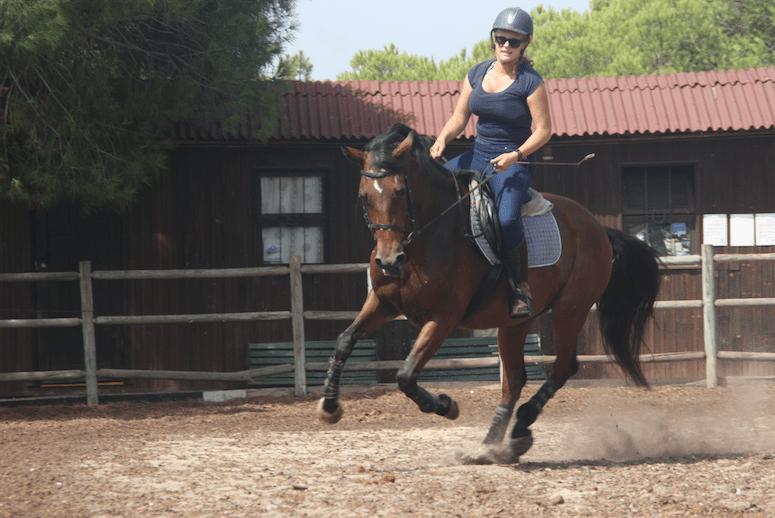 L'équitation pour tous
