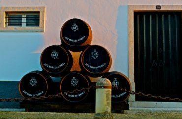 Les Portugais sont les plus grands buveurs de vin au monde