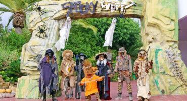 Zoomarine et le zoo de Lagos se préparent pour un Halloween «terrifiant»
