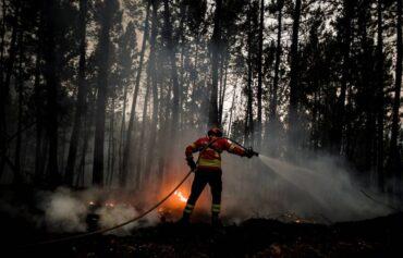 58 personnes évacuées alors que plus de 600 pompiers continuent de lutter contre l'incendie de Castro Marim