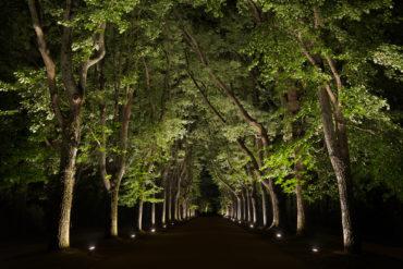 Porto: Festival nocturne « Há Luz no Parque »
