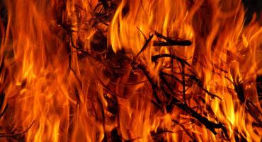 Conditions météorologiques extrêmes : incendies et inondations